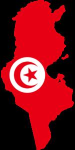 тури на відпочинок в Тунісі
