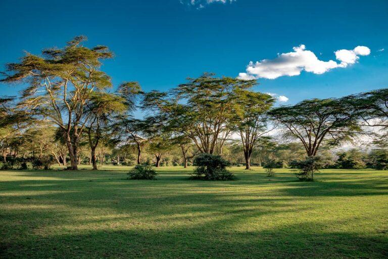 озеро Найваша, Кения